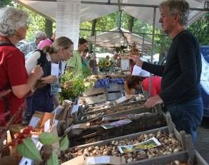 Grietmarkt biologische bloembollen